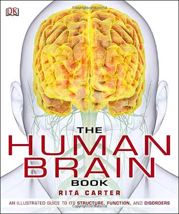 The Human Brain Book 1st Edition Pdf Free Download