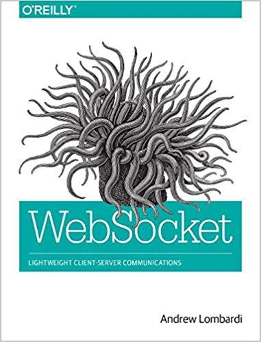 WebSocket: Lightweight Client-Server Communications 1st Edition Pdf Free Download