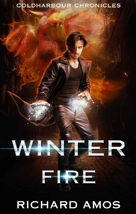 Winter Fire 1st Edition Pdf Free Download