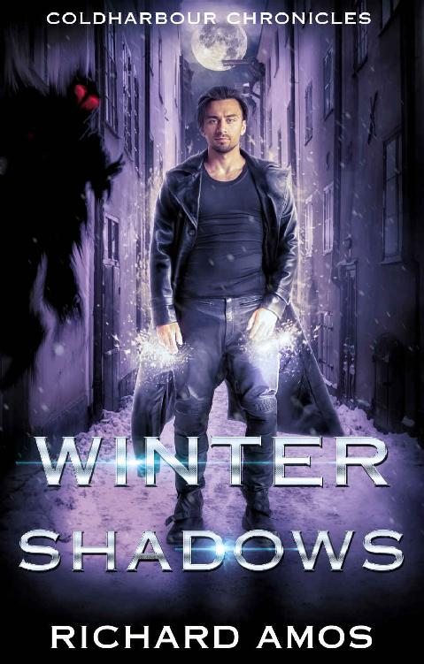 Winter Shadows 1st Edition Pdf Free Download